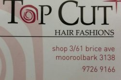 Top Cut Hair