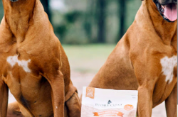 Mooroolbark Pet Food, stock feed